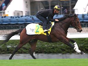 Lord Kanaloa - Hong Kong December 2012