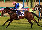 Lord Kanaloa Sets Nakayama Course Record