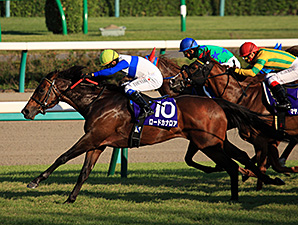 Lord Kanaloa wins the Sprinster Stakes at Nakayama Racecourse.