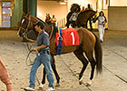 Fairplex Meet Gets Nod for Los Alamitos Move