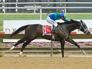 Love and Pride wins the 2012 Obeah.