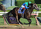 Love and Pride Stuns Royal Delta in 'Ensign