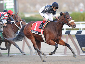 Lovely Lil wins the 2011 Go for Wand.