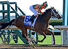 Lovely Maria Claims First Stakes in Ashland