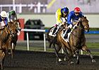 Lovely Pass Strong in Guineas Win at Meydan