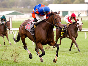 Love's Blush wins the 2011 Maryland Million Ladies.