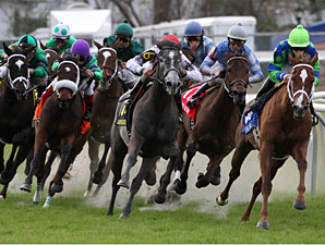 Love to Tell wins the Bayou Handicap