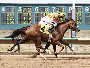 Lucci's Prize wins the 2013 CTBA Breeders Oaks.