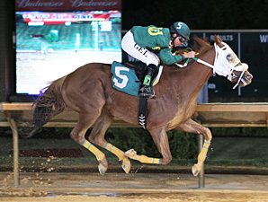 Lucy's Bob Boy Stands Out in Rich WV Classic