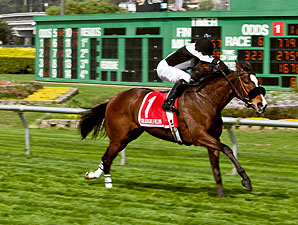 Luscious Lonna wins the Golden Poppy Stakes.