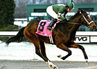 Mac the Man, Allanah Take Turfway Stakes