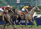 Wide-Open Field Set For Travers