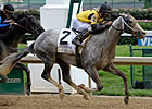 Macho Again to Skip Breeders' Cup Classic