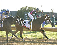 Madcap Escapade Makes Keeneland Return