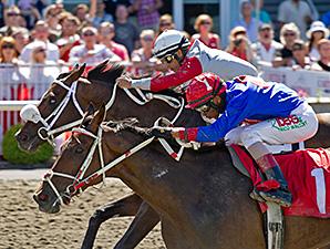 Madeira Park wins the 2014 Monashee Stakes.