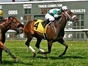 Madrilena wins the 2013 Power by Far Handicap.