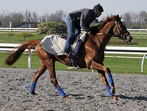 Kentucky Derby Challenge Stakes Off for 2010