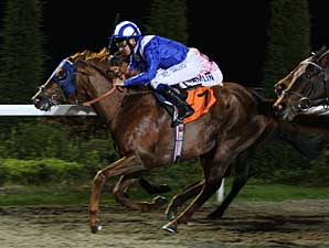 Mafaaz Earns Berth in Kentucky Derby