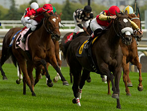Magic Broomstick wins the Avowal Stakes.