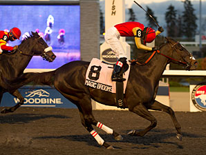 Magic Broomstick Flies to Bessarabian Victory