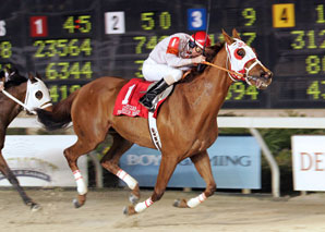 Magic Sunset Scores Premier Feature