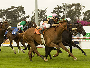 Magical Fantasy wins the 2009 Gamely.