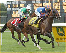 Man o'War Winner Magistretti Heading for BC Turf