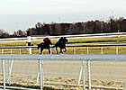 Mahoning Valley Opens Barn Area, Dirt Track
