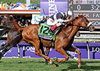 Champion Main Sequence Retired Due to Injury