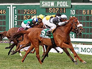 Main Sequence wins the United Nations Stakes.