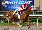 Majestic City Strong in Lone Star Handicap