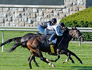 Major Gain (outside) works with Willcox Inn on Oct. 21 at Keeneland.