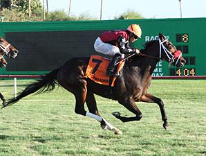 Major Magic wins the 2012 Jack Coady, Sr. Stakes.