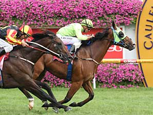 Maldivian Takes CF Orr at Caulfield