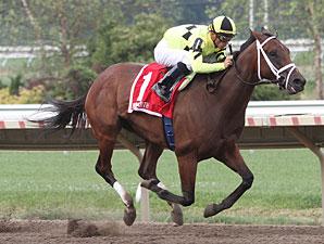 Malibu Prayer wins the 2010 Lighthouse Stakes.