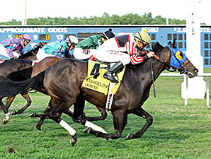Malibu Yankee wins the 2014 Opelousas Stakes.