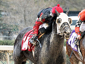 Mallard's Bro wins the 2014 Arkansas Breeders' Stakes.