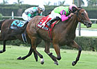 Miami Mile: Mambo Meister, Jet Propulsion Vie