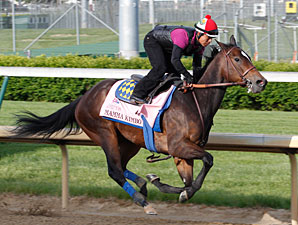 Mamma Kimbo  - Churchill Downs, April 24, 2012.