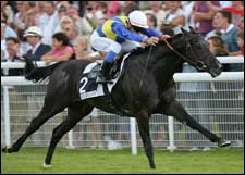 Champion Manduro to Join Darley Stallion Roster