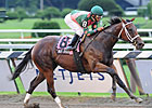 Mani Bhavan Romps by Seven in Adirondack