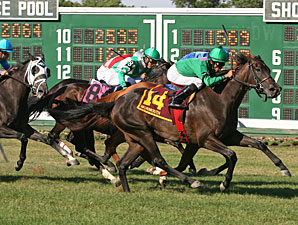 Turf Stakes Highlight Belmont Derby Day Card