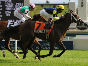 Marchfield Wins Sky Classic Stretch Duel