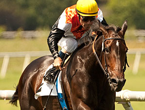 Tough Marketing Mix Faces Eight in Beverly D.