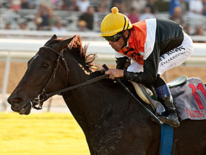 F&M Turf: Marketing Mix Defends at Home