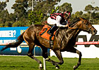 Favored Marlang Runs Off With Sunset &#39;Cap