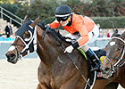 Marquee Miss Edges Nickname at Oaklawn