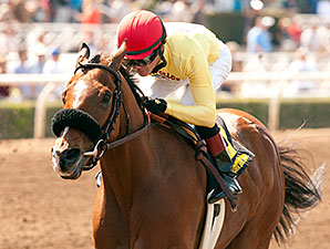 Masochistic wins the Kona Gold Stakes.