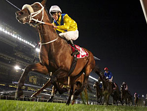 Master of Hounds wins the 2012 Jebel Hatta.
