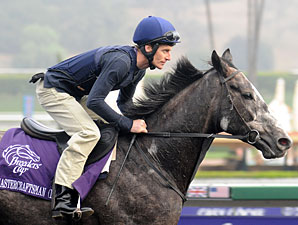 Mastercraftsman retired; 2010 Coolmore fees